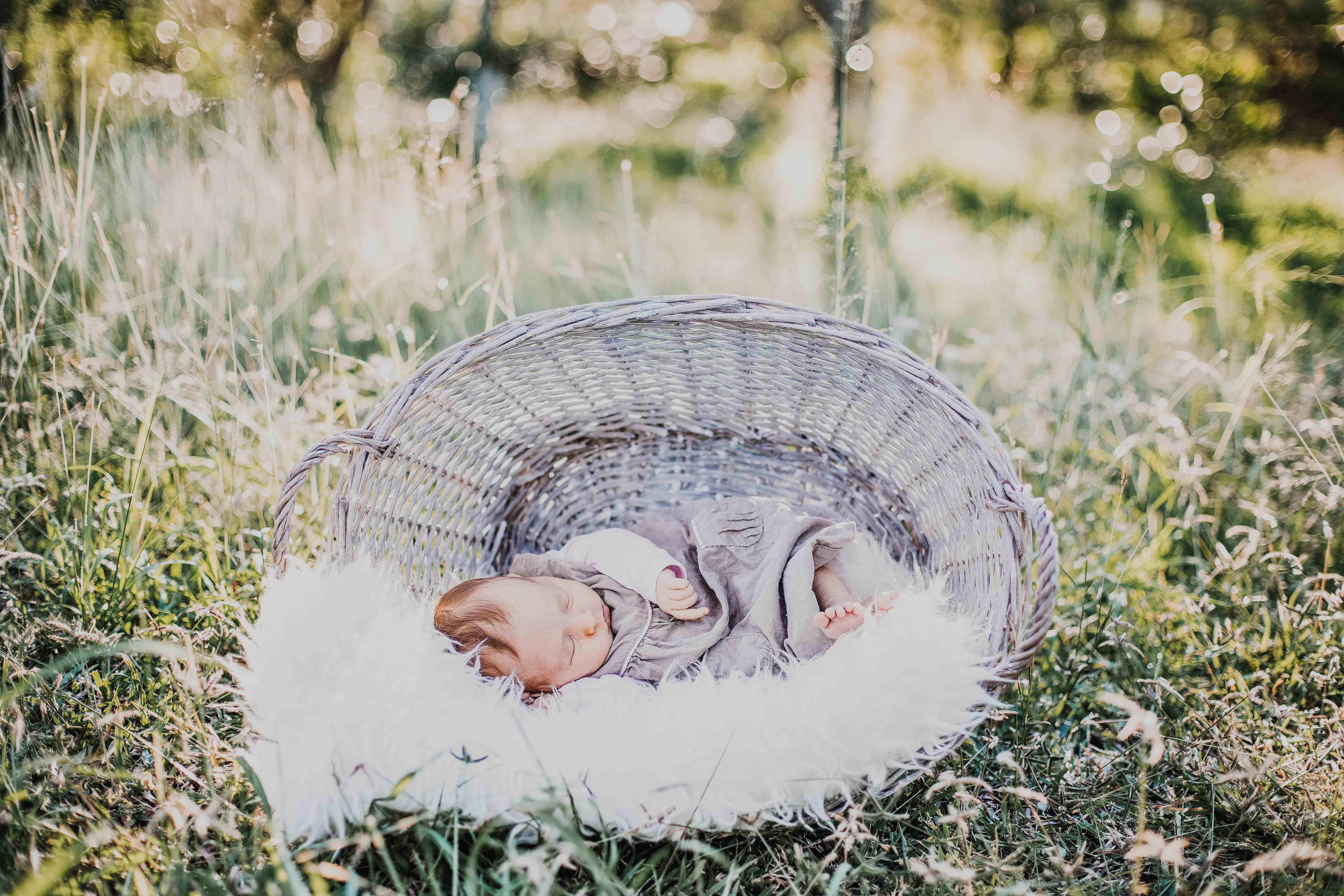 bébé est posé endormi dans un panier en osier, dans l'herbe